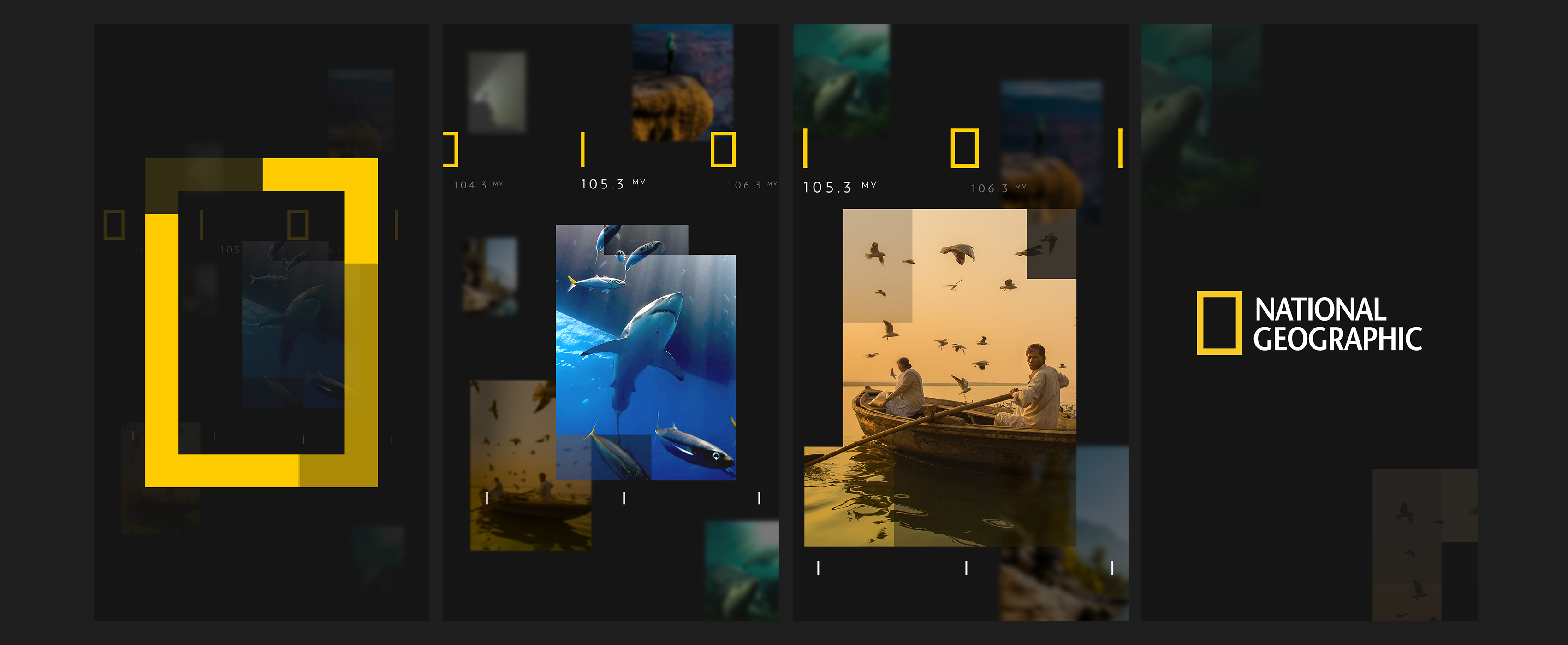 NatGeo_Design_Board_Thumbs_r2_v01